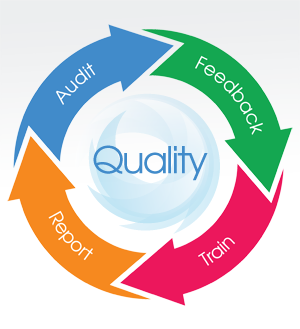 Pressure Ulcer Prevention Bundle Quality And Safety Audit